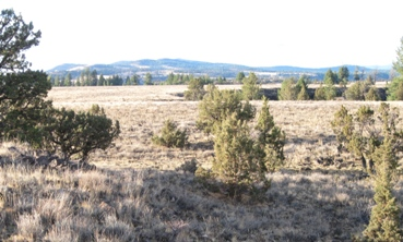 view across Moffit Table to Malheur River Canyon